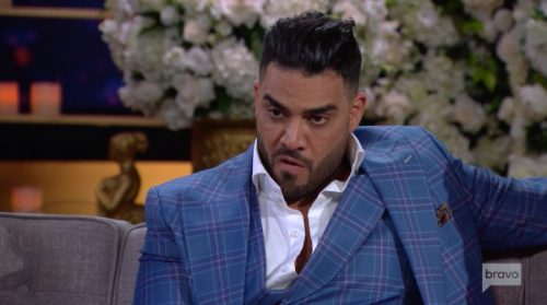 Shahs of Sunset mike shouhed